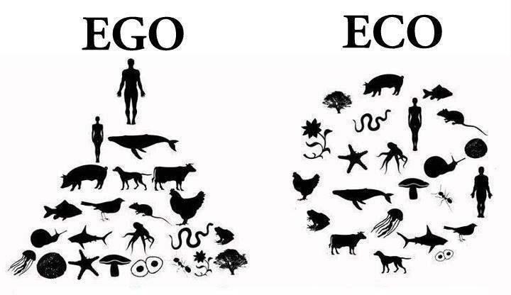 Do antropocentrismo ao mundo ecocêntrico