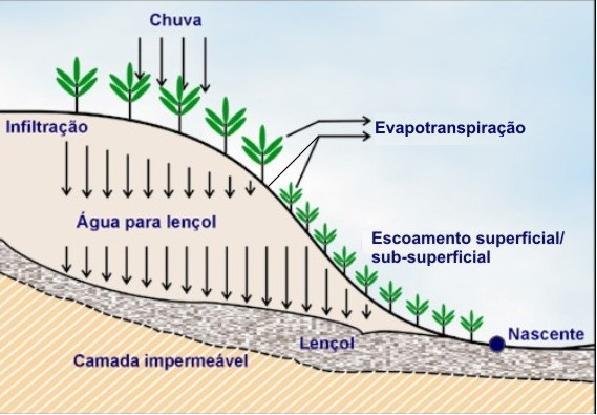 UTI ambiental: diagnóstico da água III - Figura 2