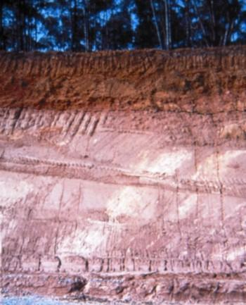 Nítida diferenciação entre os solos superficiais laterizados e os solos residuais saprolíticos mais profundos