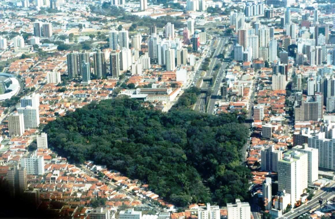 Urbanização X Meio Ambiente - Os dois lados do planejamento urbano ... 300c93691fe7