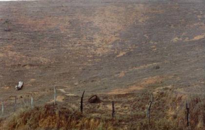 Pasto degradado. Foto de arquivo