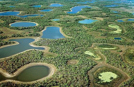 Lagoas da planície do Pantanal unem beleza e diversidade biológica. Mas as jazidas minerais no subsolo criaram uma corrida à região