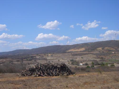 Energia Eólica: Uma análise acerca dos impactos sociais e ambientais em Caetité, BA