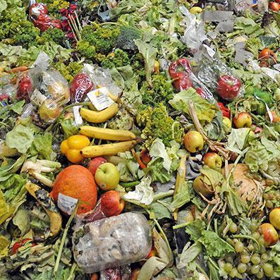 O Brasil está entre os 10 países que mais desperdiçam comida no mundo