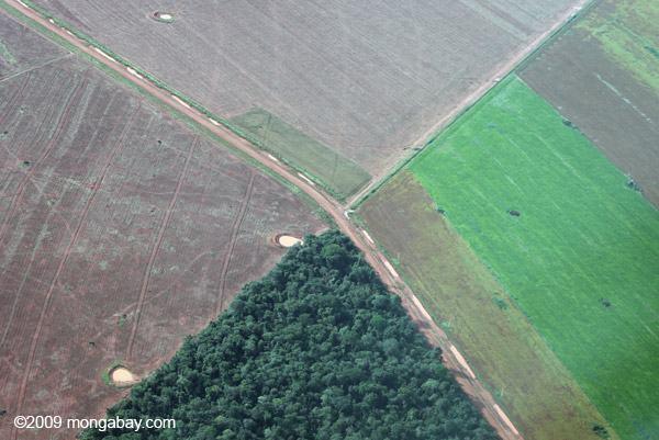 agricultura x sustentabilidade