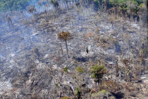 Desmatamento na Amazônia, em foto de arquivo