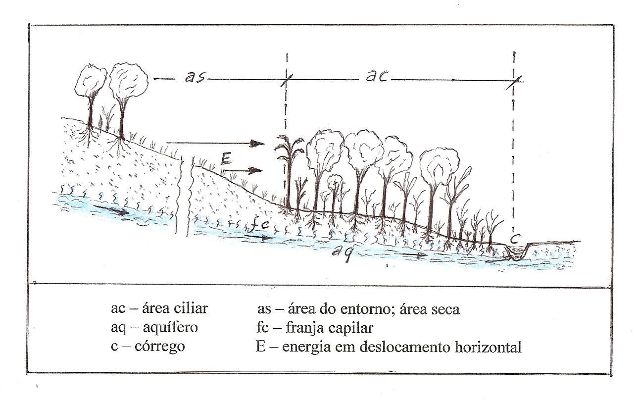 Nem só de APPs vivem os rios, artigo de Osvaldo Ferreira Valente