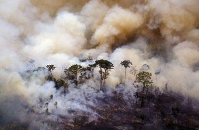 Queimada na Amazônia, em foto de arquivo
