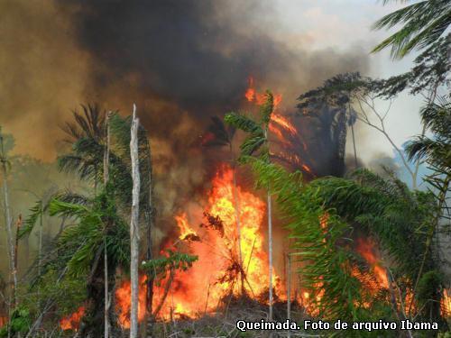 incêndio florestal na Amazônia