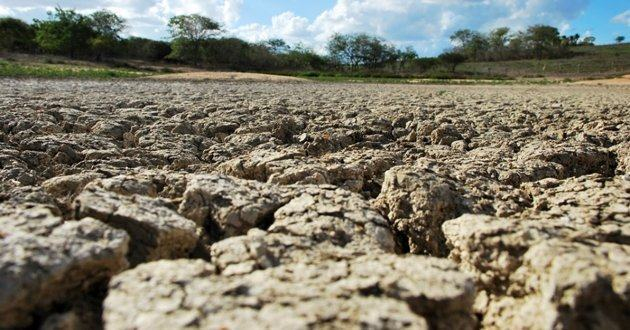 Em 2100 parte do Semiárido pode se tornar deserto, revela Inpe