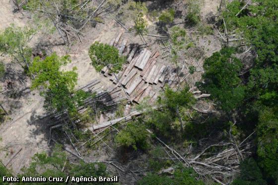 Mata Atlântica,desmatamento na Mata Atlântica,desmatamento,recursos hídricos