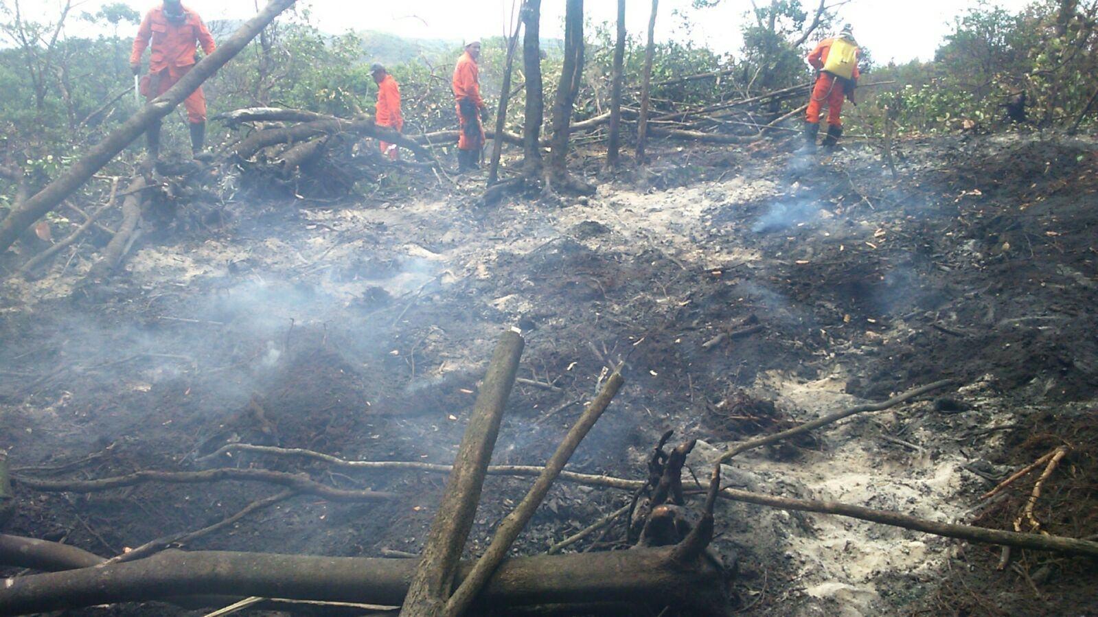 Incêndios das serras de Jacobina são debelados