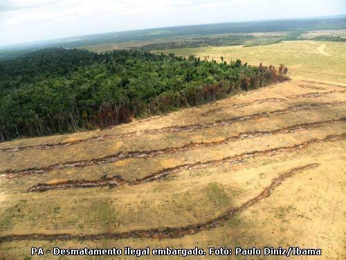 desmatamento no Brasil, desmatamento e clima
