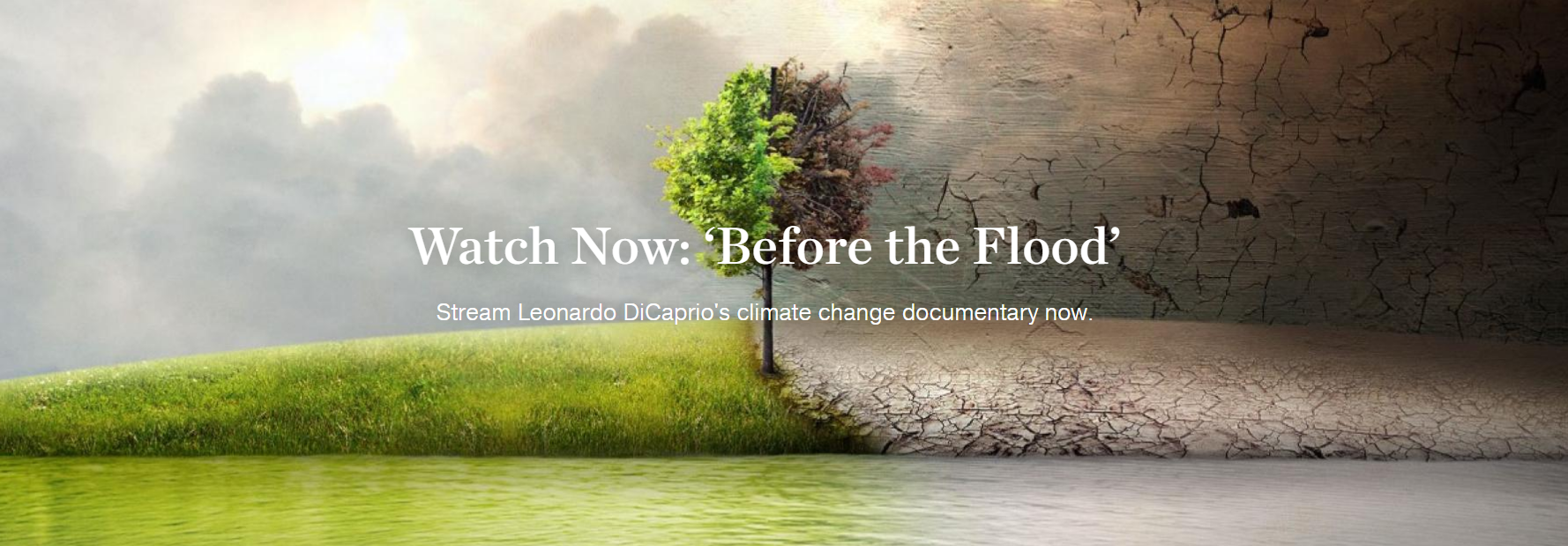 "novo filme de Leonardo DiCaprio ""Before the Flood"