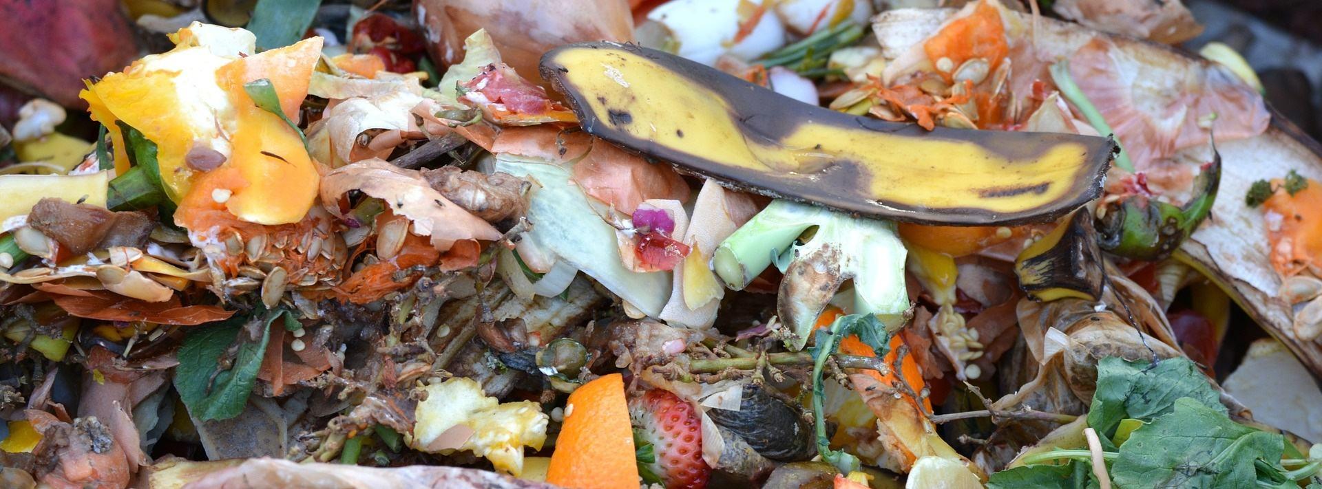 compostagem