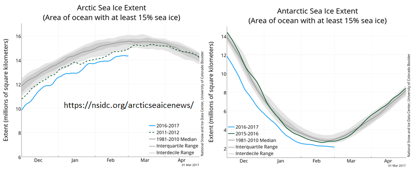 arctic and antarctic sea ice extent