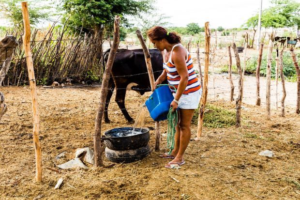 Foto 4 – Campesina retira agua pluvial do Canal do Moxotó (seco) para dessedentação animal