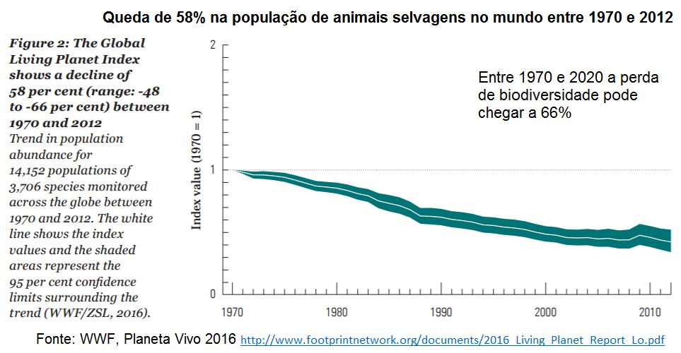 queda de 58% na população de animais selvagens no mundo entre 1970 e 2012