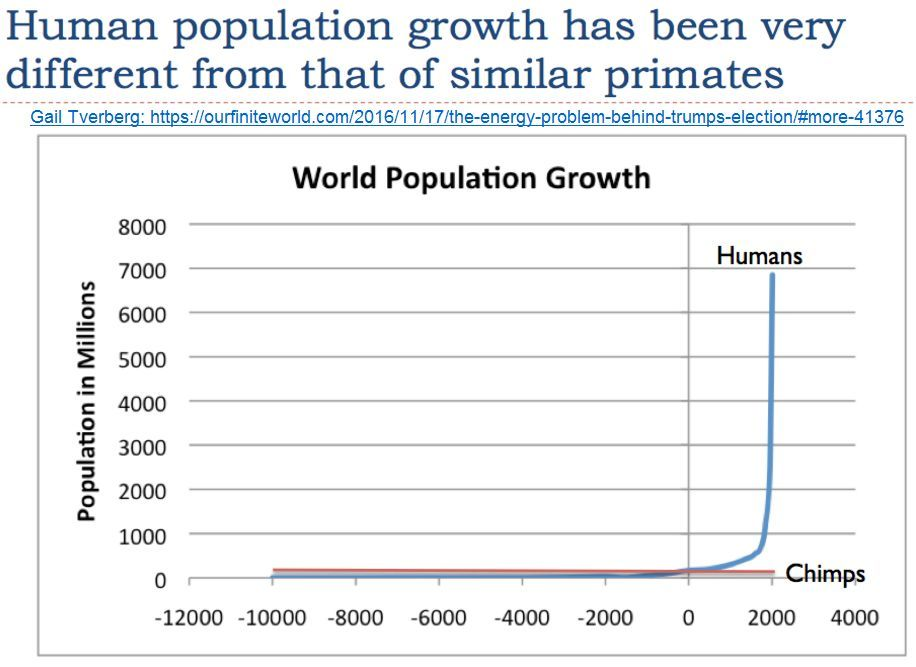 human population vs similar primates