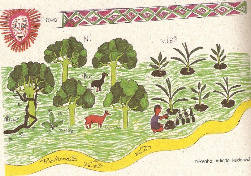 Figura 2: Um dos muitos desenhos que compõem os trabalhos dos AAFIs e os PGTIs do Acre. Desenho de Arlindo Kaxinawá. Fonte: OCHOA & TEIXEIRA, 2006.