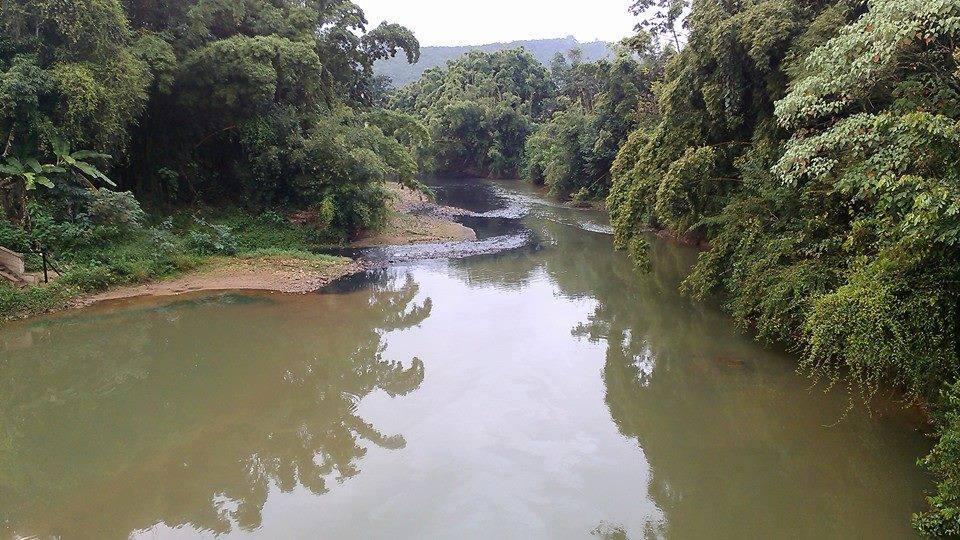 Figura 1. Encontro das águas poluídas do ribeirão das Almas com as do rio Piranga, Piranga (MG), 2014. Fonte: Foto de Leonardo Alves (2014)