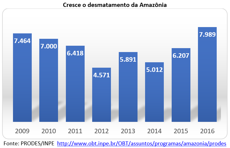 cresce o desmatamento da Amazônia
