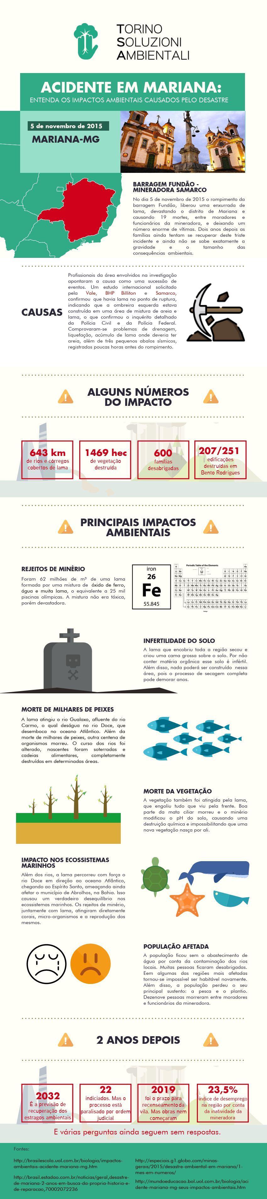 Infográfico - Tragédia De Mariana: entenda os impactos ambientais causados pelo desastre