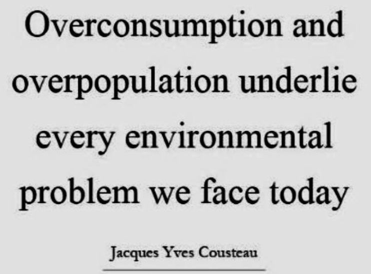 consumo,consumismo,população,Sobrecarga da Terra,superpopulação e superconsumo,Pegada Ecológica,o que é Pegada Ecológica,biocapacidade do Planeta,o que é biocapacidade do Planeta