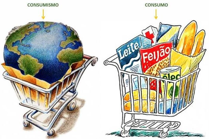 Figura 3 – Comparação entre Consumo e Consumismo.