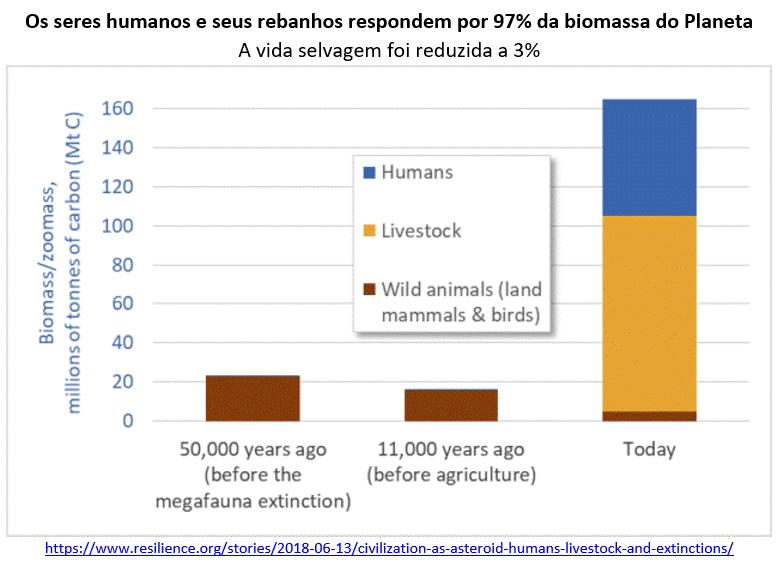 os seres humanos e seus rebanhos respondem por 97% da biomassa do planeta