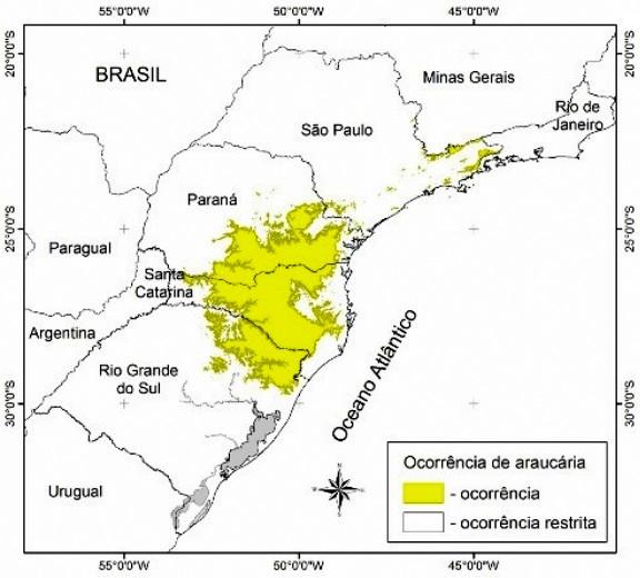 Áreas com ocorrência de araucária