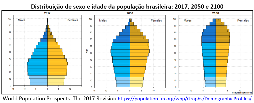 distribuição de sexo e idade da população no Brasil