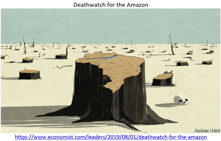 """""""The Economist"""" publicou a matéria """"Relógio da Morte para a Amazônia"""""""