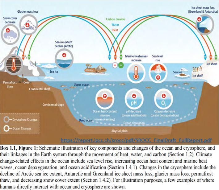 Relatório do IPCC sobre a degradação dos oceanos e da criosfera