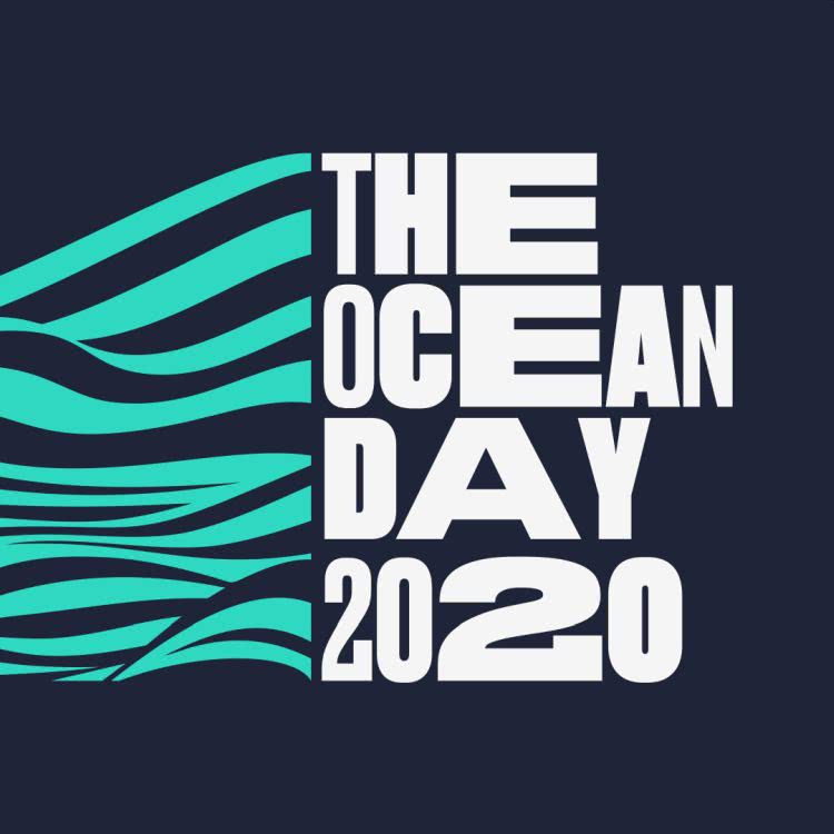 The Ocean Day 2020