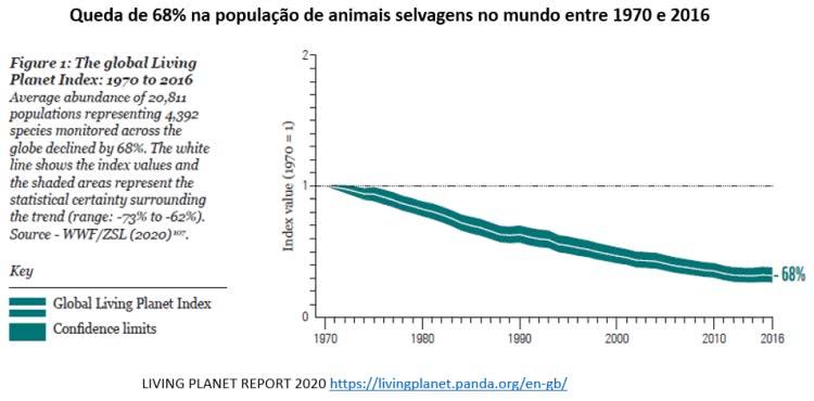 queda de 68% da população de animais selvagens no mundo
