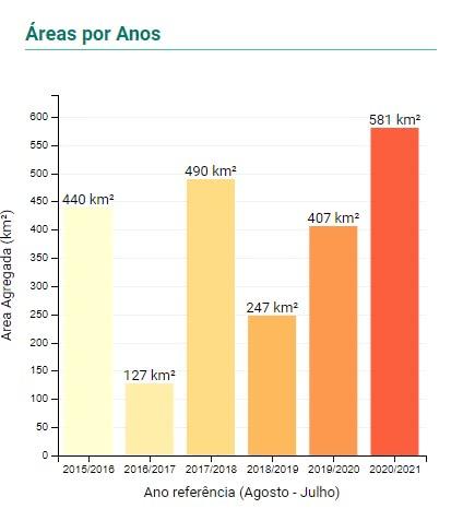 Abril registra recorde de desmatamento