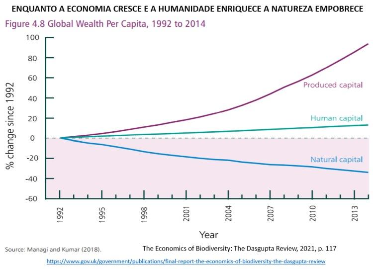 enquanto a economia cresce a natureza empobrece