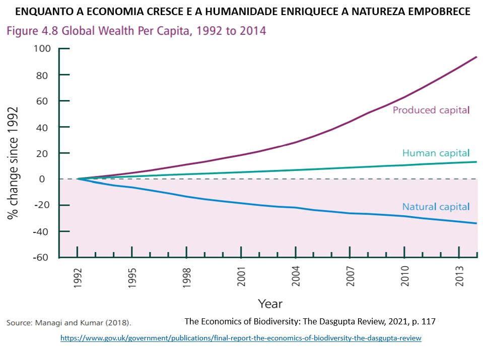 economia cresce e a natureza enfraquece