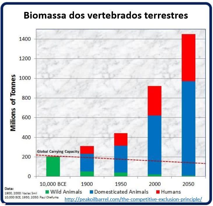 biomassa dos vertebrados terrestres
